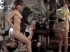Porn stars shacking up hot playgirl