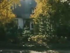 Euphemistic depart Wilde Lusten 1984